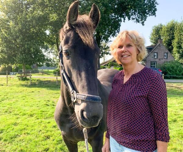 Opstellingendag met het paard in Nijemirdum