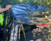 Vrouw springt in het water en helpt onfortuinlijke man uit auto bij Sint Nicolaasga