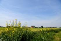 Landbouwadvies op eigen erf van de boer