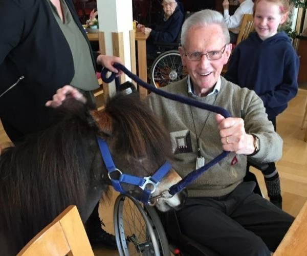 FOTO'S / Doniahiem: er staat een pony in de gang