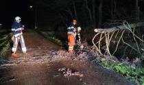 Brandweer haalt boom van de weg in Echtenerbrug