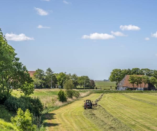 Het gedroogde gras in goede banen leiden
