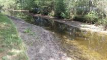Wetterskip Fryslân neemt maatregelen vanwege dreigend watertekort