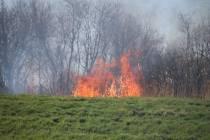 FOTO'S / Brandweer opgeroepen voor rietbrand