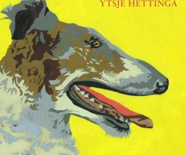 Nij boek mei Fryske ferhalen fan Ytsje Hettinga