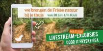 Op pad met It Fryske Gea via livestream-excursies in de natuur